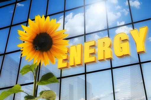 ブルーコンシャス エコを中心としたヒトと環境に優しい会社