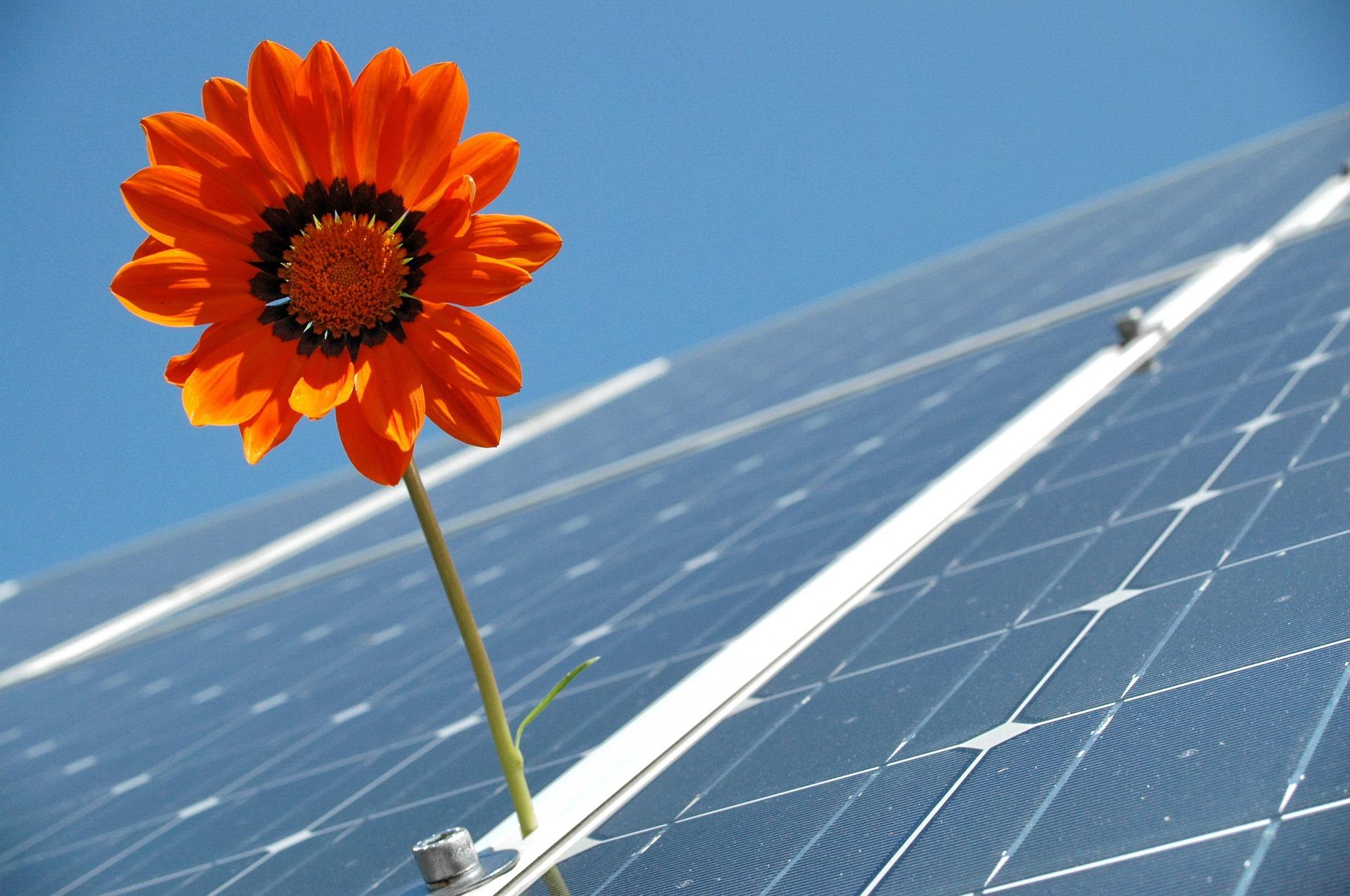 失敗しない太陽光発電投資を行うコツとは?