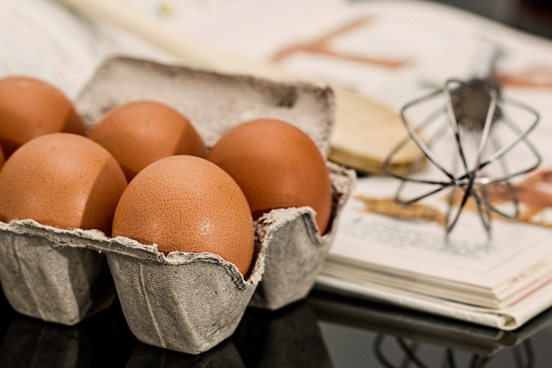 鶏卵生産大手のアキタフーズ、「きよらの卵」の違いとは?